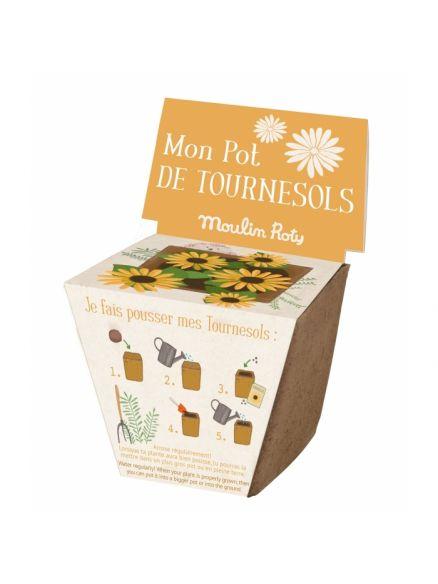"Garden Kit Γλαστράκι με Σπόρους ""Sunflowers"""