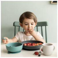 https://dodoandberries.com/pub/media/catalog/product/cache/d192bb0fdd00b28cb40749246642e581/p/r/premium-silicone-baby-meal-set_2f23f91b-215e-401b-868c-0ae3f7d146ac.jpg