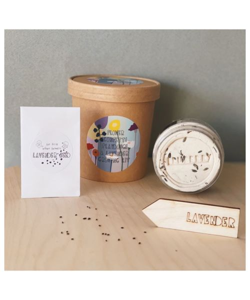 "Growing Kit ""Playdough Lavender + Σπόροι"""